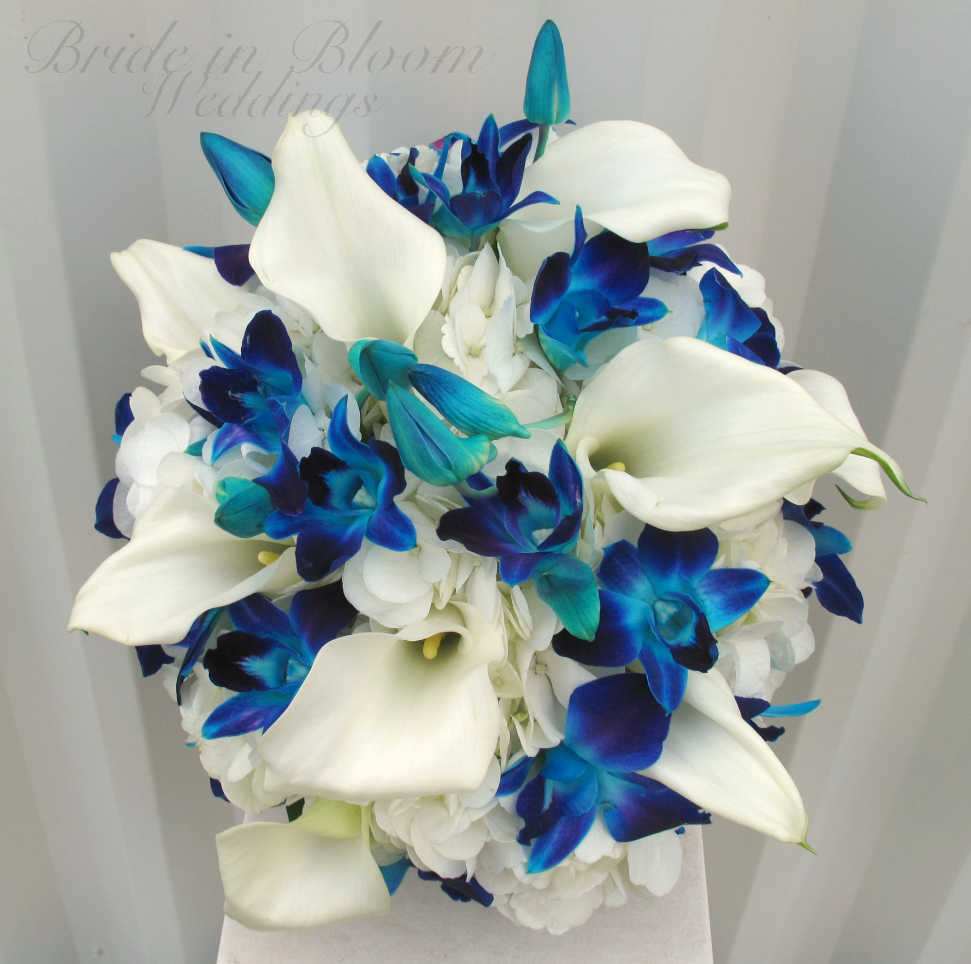 Blue orchid, white calla wedding bouquet | Bride in Bloom