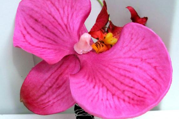 Fuchsia orchid boutonniere