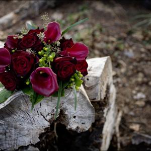 Black bacarra, majestic red calla lily presentation bouquet